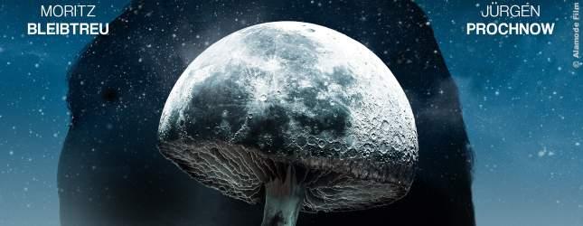 Ein Trip mit halluzinogenen Pilzen verändert die Persönlichkeit eines Anwalts. Er wird zum Mörder und unberechenbar.