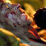Netflix kauft Fortsetzung von legendärem Horrorfilm aus den Kinos - News 2021