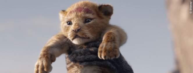 Der König Der Löwen: Filmkritiken