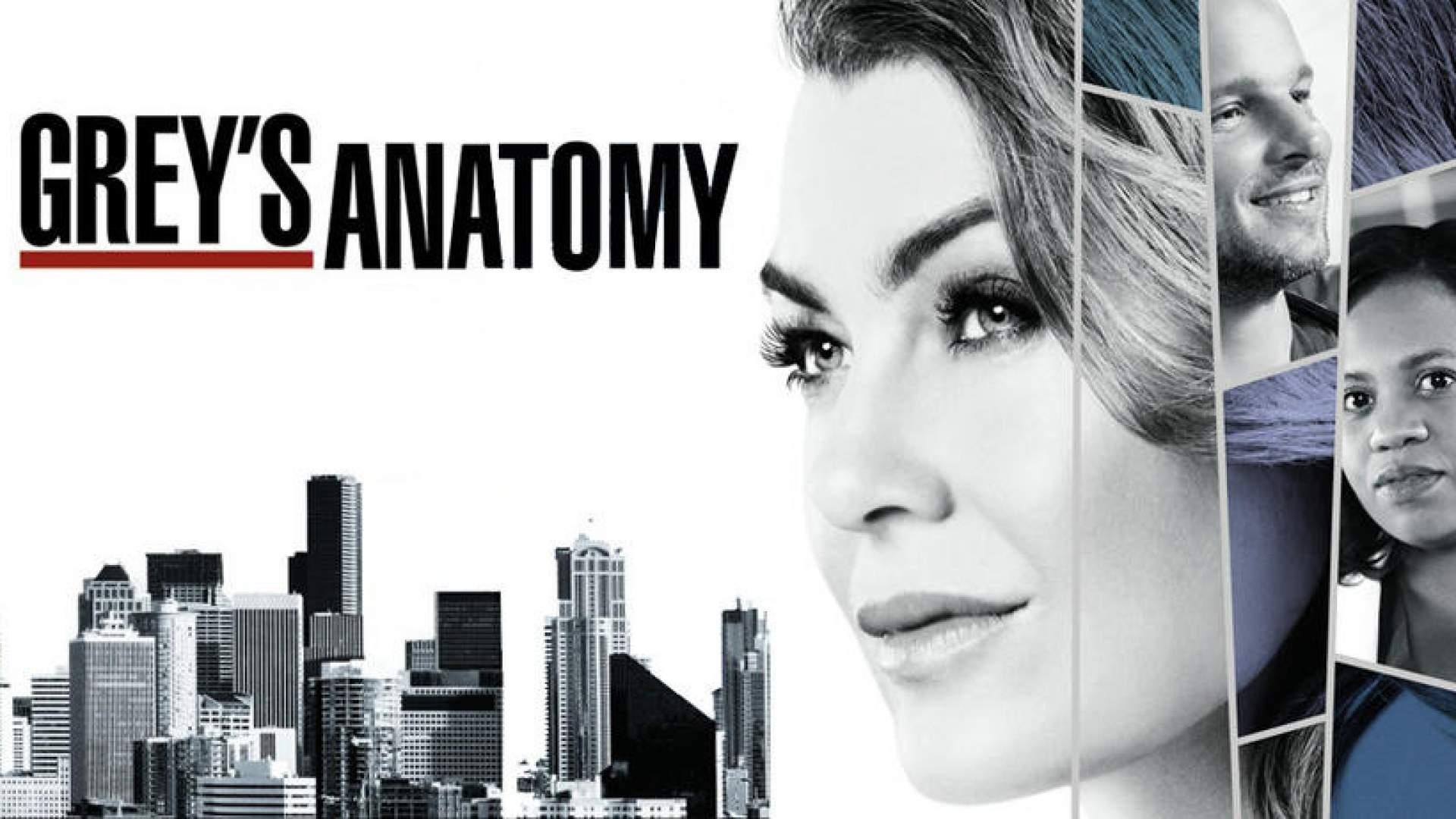 Groß Greys Anatomy Freier Strom Zeitgenössisch - Anatomie Ideen ...