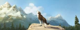 Die Abenteuer Von Wolfsblut Trailer