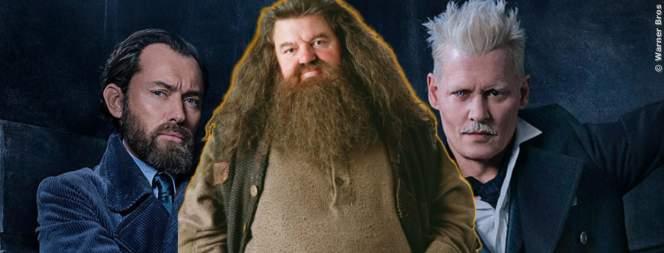 Tierwesen 3: Hagrid könnte mitspielen