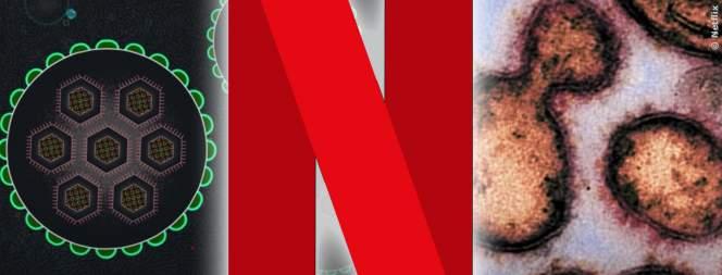 Netflix erklärt den Coronavirus im Stream