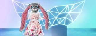 The Masked Singer: Alle Masken der neuen Staffel