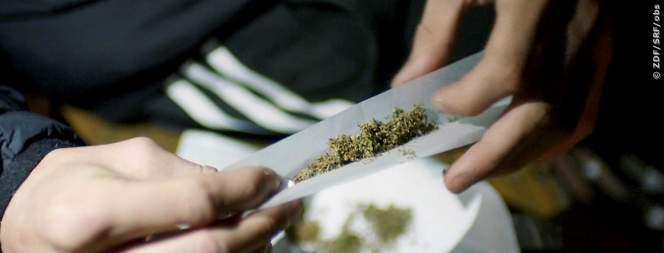 Jung und bekifft - So unterschiedlich wirkt Cannabis
