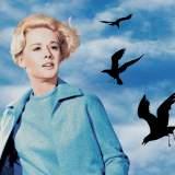 Die Vögel - Film 1963