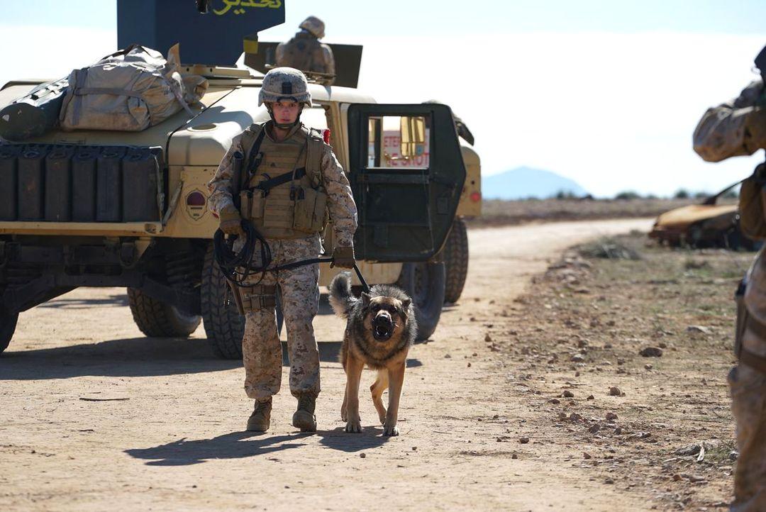 Sergeant Rex - Nicht Ohne Meinen Hund - Bild 6 von 11
