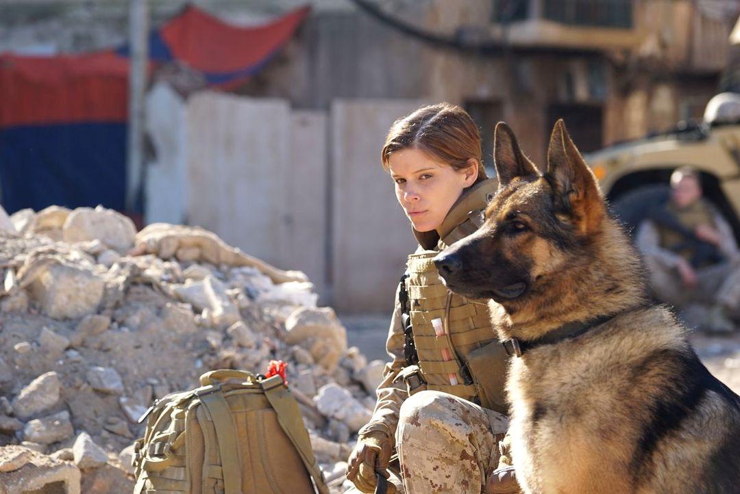Sergeant Rex - Nicht Ohne Meinen Hund - Bild 8 von 11