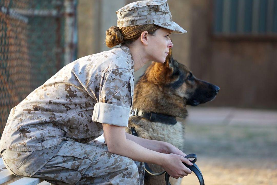Sergeant Rex - Nicht Ohne Meinen Hund - Bild 9 von 11
