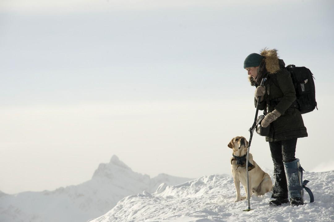 Zwischen Zwei Leben - The Mountain Between Us - Bild 17 von 23