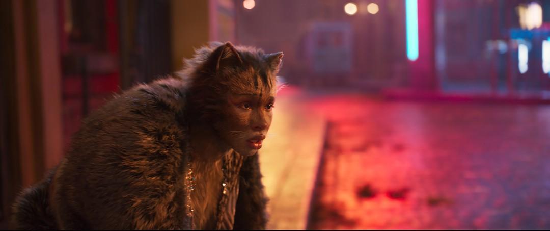 Cats Trailer - Bild 1 von 11
