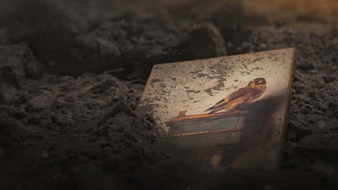 Der Distelfink Trailer - Bild 1 von 10