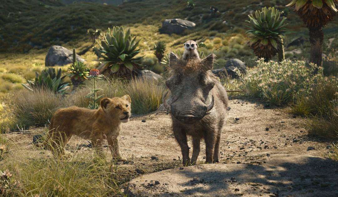 Der König Der Löwen 2019 Trailer - Bild 1 von 72