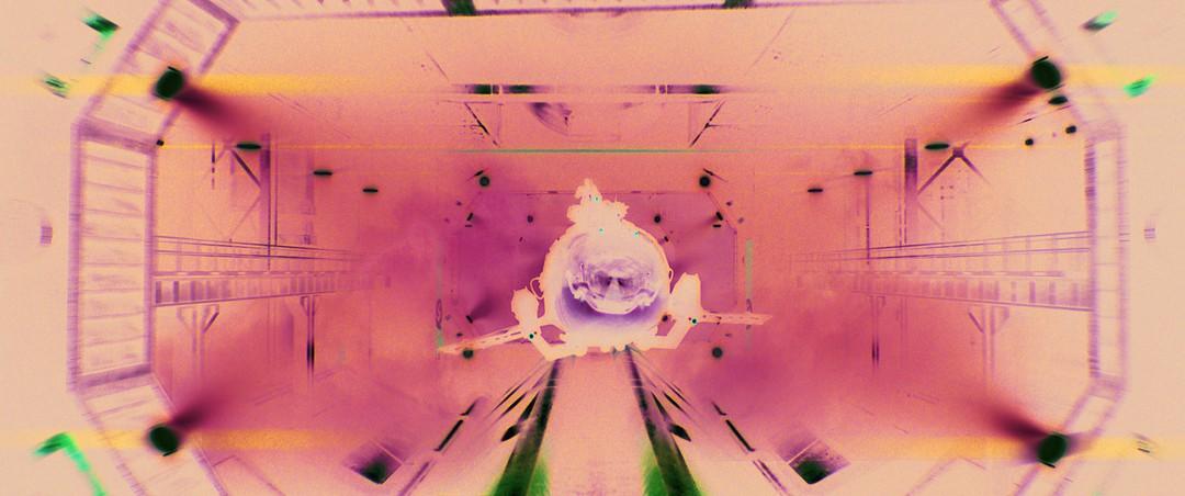 Bild zu Sky Sharks