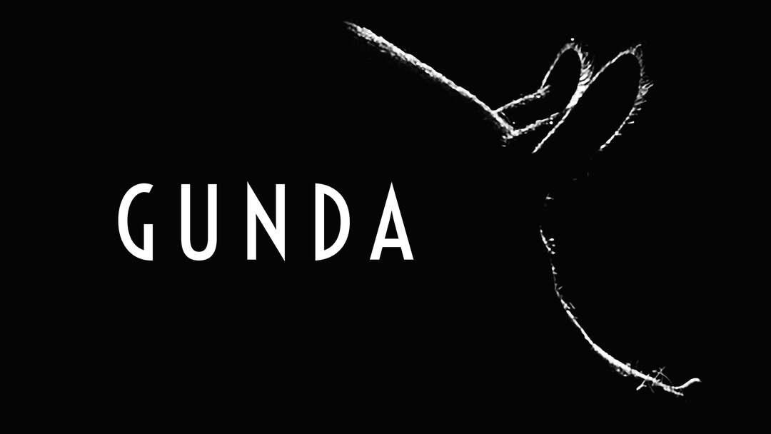 Bild zu Gunda